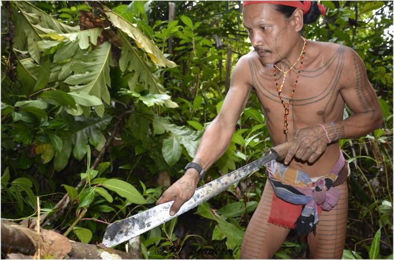 «Un regard, des sourires»  Mentawaï 2013-14