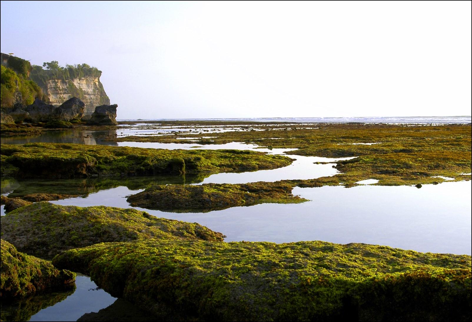 Bali 2012-61