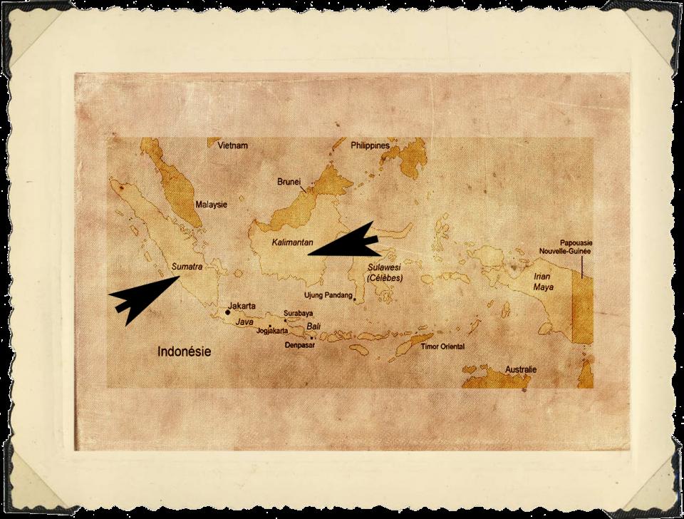 Indo carte3