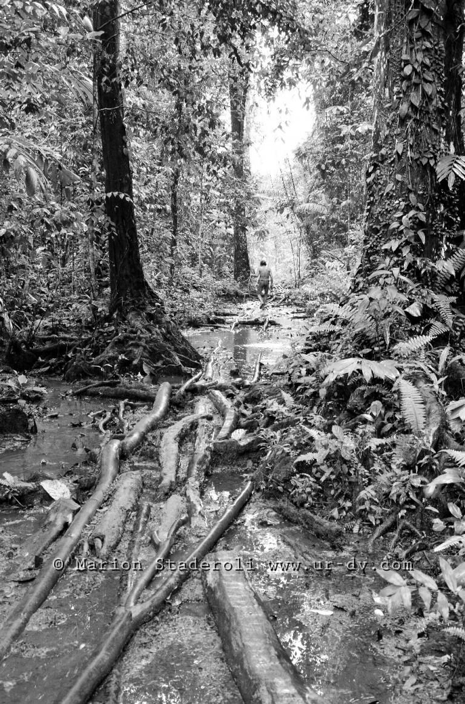 Mentawai. M. Staderoli39.web