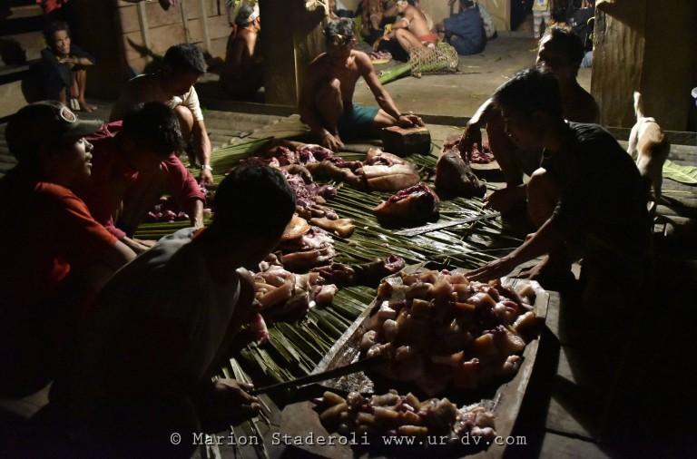 Mentawai. M. Staderoli49.web
