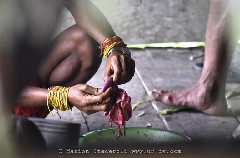 Mentawai. M. Staderoli58.web