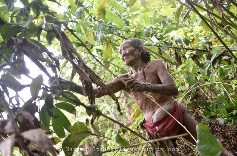 Mentawai. M. Staderoli65.web