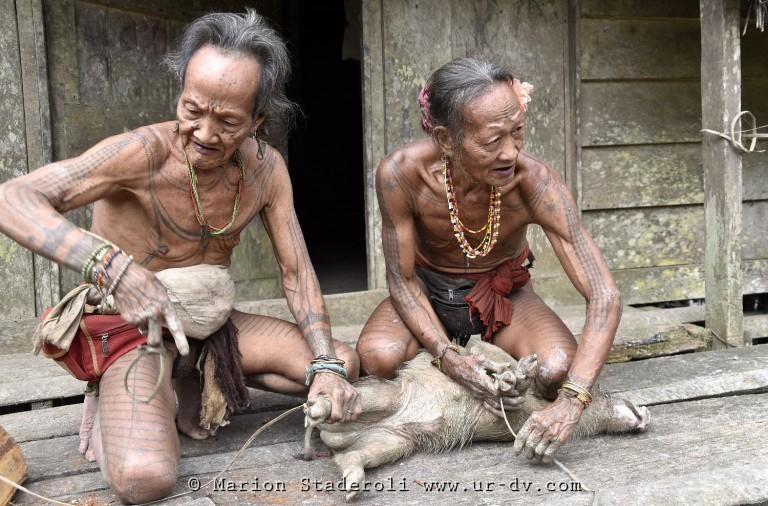 Mentawai. M. Staderoli66.web
