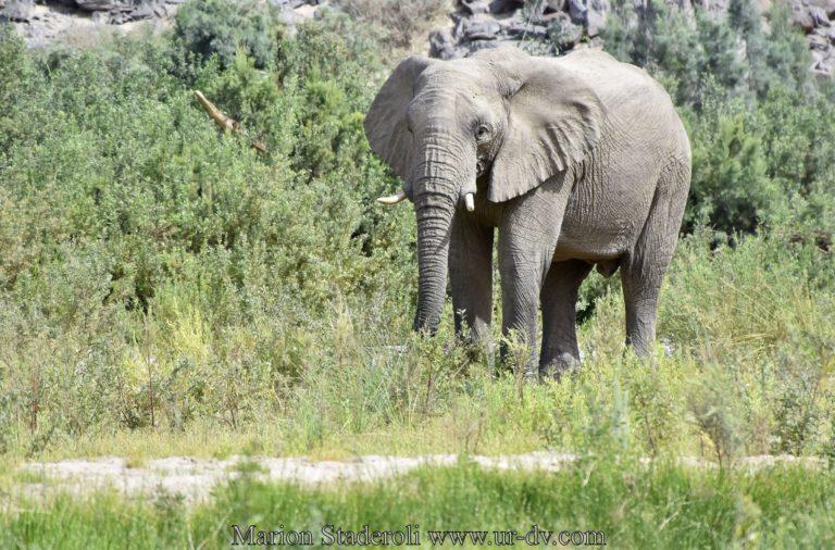 Namibie-109