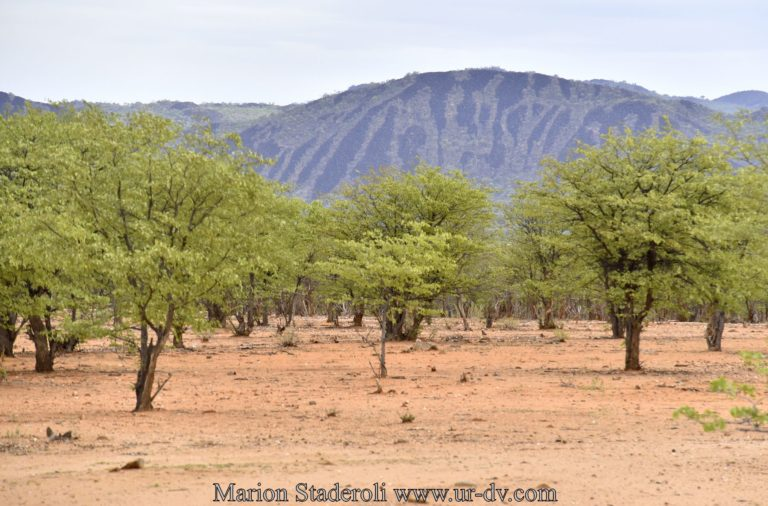 Namibie-44