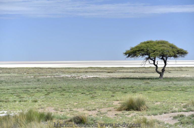 Namibie-29